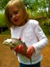 A Rainbow Trout being admired by my daughter
